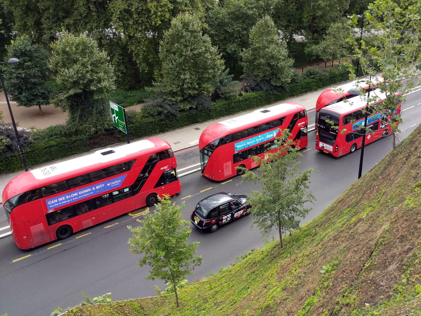 Looking down on buses and a taxi on the road, with the Mound in the foreground, and Hyde Park in the background